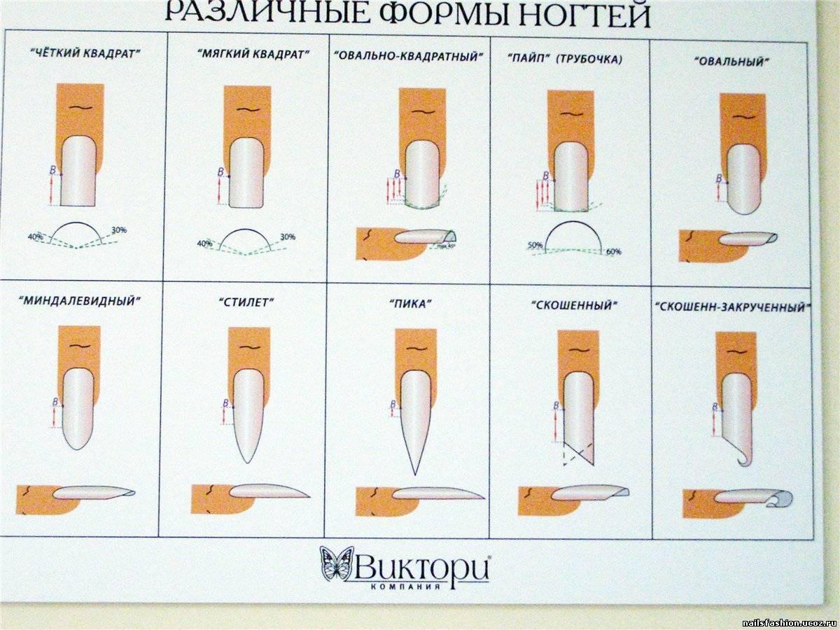 Какая бывает форма у ногтей